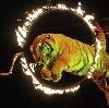Цирки в Слюдянке